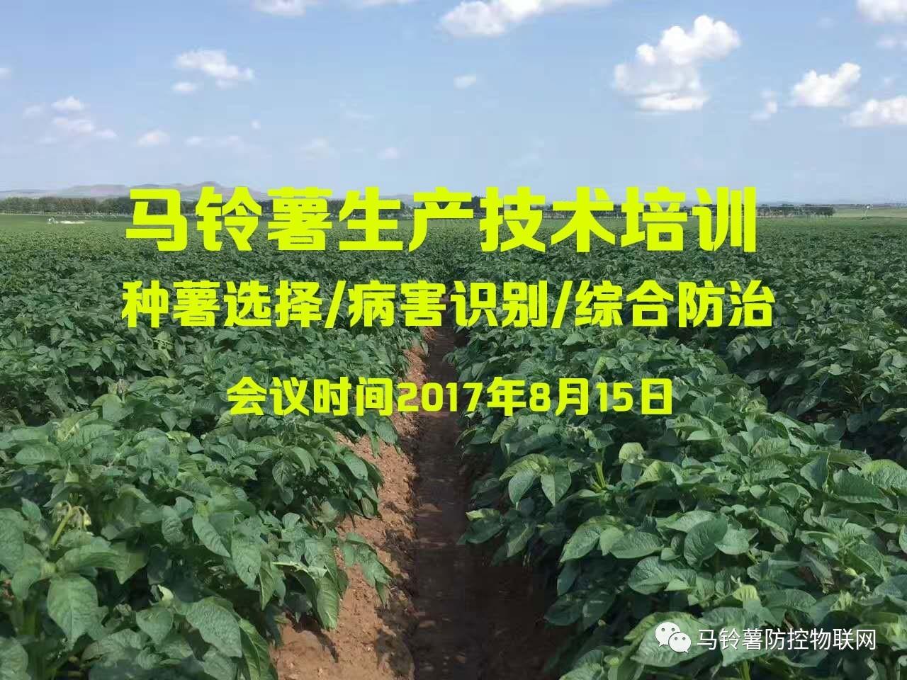 8月15日黑龙江省农业科学院农化研究所举办马铃薯生产技术培训_薯卫士_马铃薯支持平台
