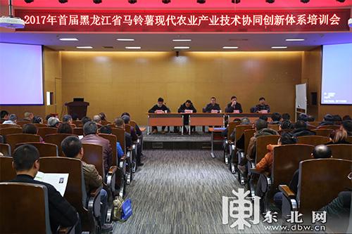 黑龙江省构建马铃薯产业创新体系促进贫困户脱贫致富_薯卫士_马铃薯支持平台