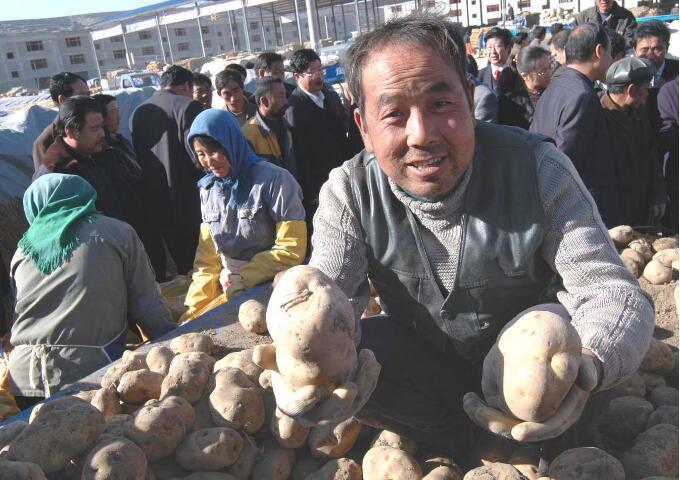 2018年土豆价格预测会上涨吗?_薯卫士_马铃薯支持平台